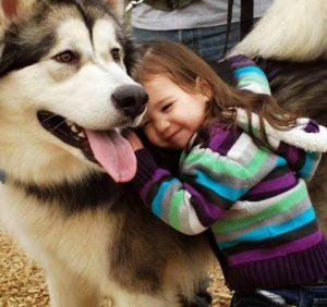 Kinh nghiệm chọn vật nuôi trong gia đình bạn