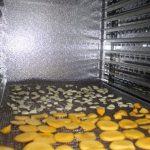 Hướng dẫn cách sử dụng máy sấy hoa quả tại nhà