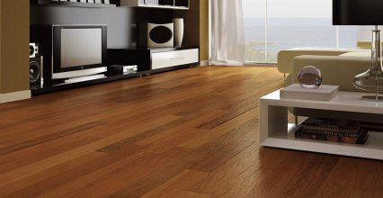 Đặc điểm chung của các loại sàn gỗ malaysia chính hãng là gì?